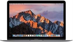 Ноутбук Apple MacBook 12'' Space Gray MNYG2RU/A - фото 28992