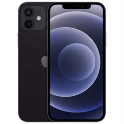 Смартфон Apple iPhone 12 256GB Black (Чёрный) - фото 33138