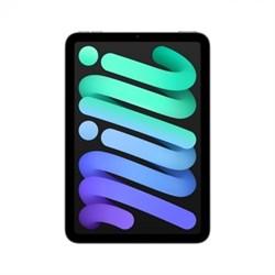 Планшет Apple iPad mini 256GB Wi‑Fi + Cellular Space Gray (MK8F3RU/A) - фото 35325